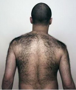 Лысый с волосатой спиной